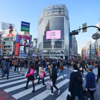 Shibuya - Scramble Crossing