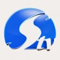Silverbird Television
