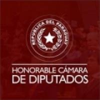 TV Camara Paraguay